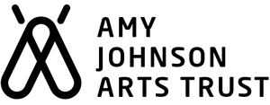 Amy johnson arts trust logo.